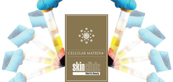 cellular-matrix-1